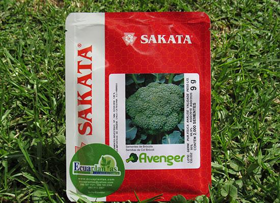 semillas-de-brocoli avenger